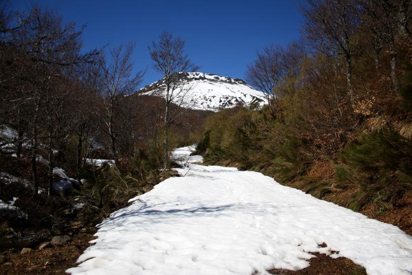 La pista cuando se llega a la Llorada estaba cubierta de nieve. Foto: Sara Gordón