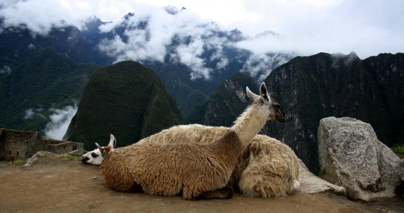Machu Picchu. Foto: Sara Gordón