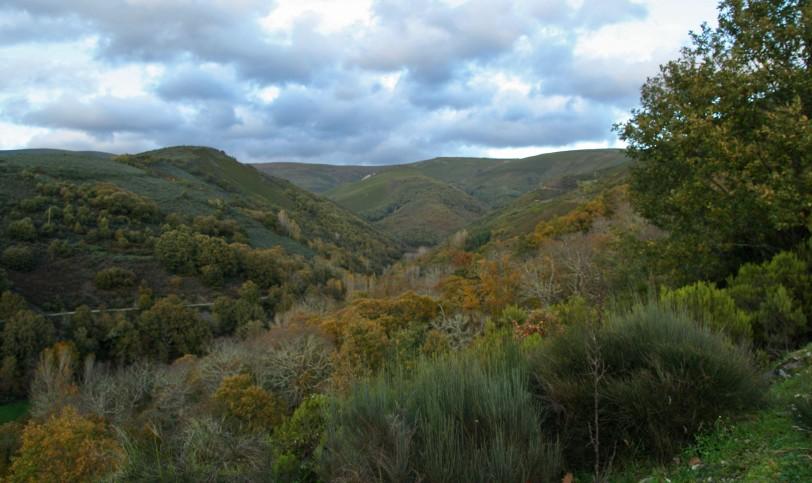 Los Ancares cubiertos de otoño. Foto: Sara Gordón