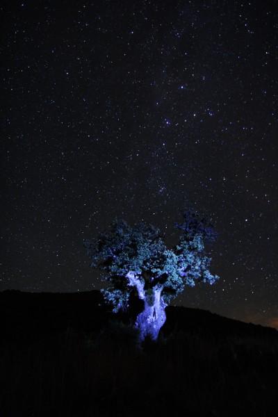 El universo desde Boñar. Foto: Sara Gordón
