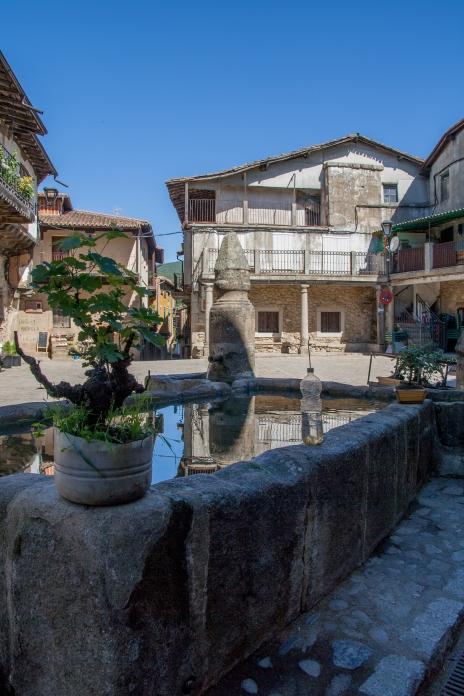 Imagen de la plaza de San Martín del Castañar. Foto: Sara Gordón