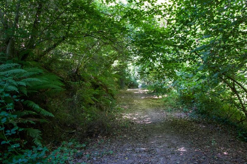 La ruta es circular y son nueve kilómetros. Foto: Sara Gordón