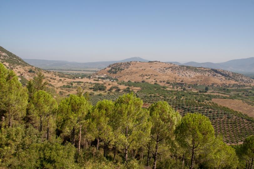 Al fondo puede verse Éfeso, éste es el paisaje que la rodea. Foto: Sara Gordón