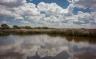 Con su declaración como Parque Nacional se dio un gran paso en la conservación de uno de los ecosistemas más valiosos de nuestro planeta, asegurando así, la supervivencia de la avifauna que utiliza estas zonas como área de invernada, mancada y nidificación. Foto: Sara Gordón