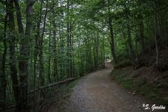 El parque nacional de Ordesa y Monte Perdido está ubicado en el Pirineo oscense, íntegramente en la comarca del Sobrarbe, Aragón. Foto: Sara Gordón